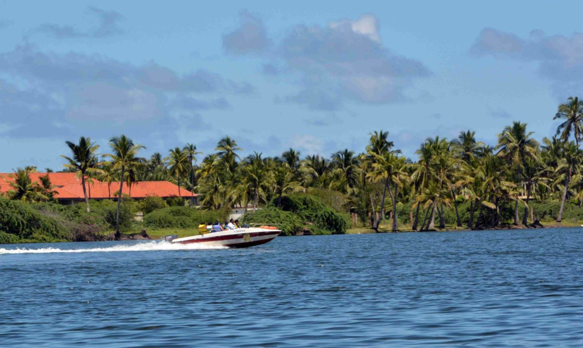 tourists take a boat rite on the coconut fringed Chunambar backwaters