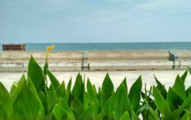 Simple Pleasures of a Pondicherry Summer: starry nights, sea breeze, sweat and surf