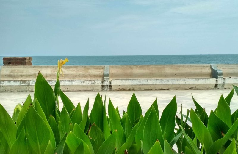 a view of the promenade along the Bay of Bengal, blue sea and blue sky in Pondicherry