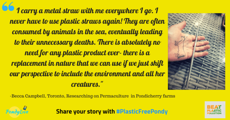 metal straws are good alternatives to beat plastic pollution for plastic free pondy