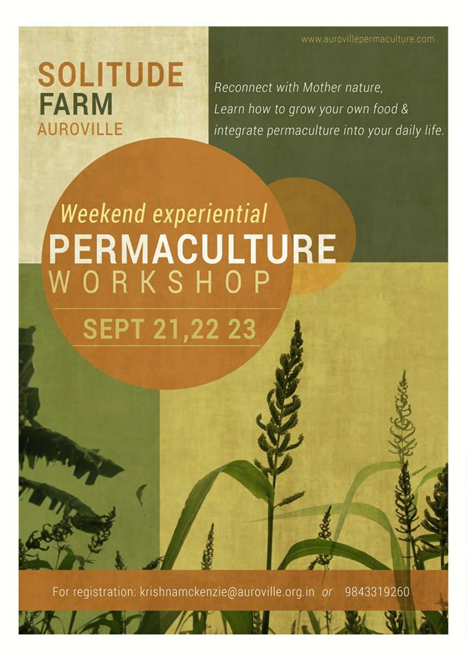 permaculture workshop at solitude farm in auroville