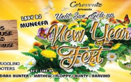 New Year Fest