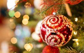 5 Ways to Celebrate Christmas in Pondicherry