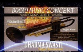 BOCAO Music Concert