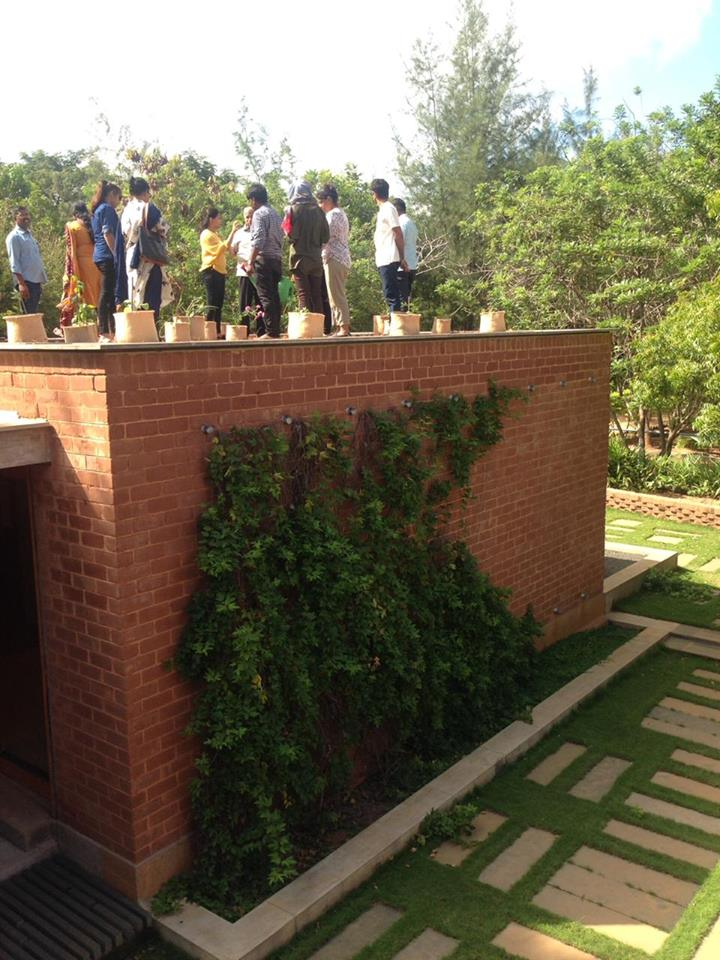 Introduction to Urban Organic Garden