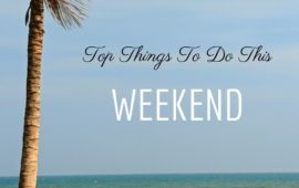 Your Guide to the first weekend of February in Pondicherry