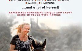 Horse Getaway