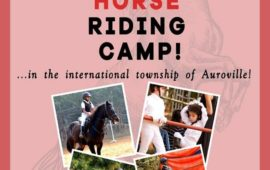 Red Earth Riding School