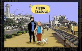 TINTIN est les Tamouls