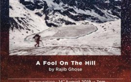 A Fool on the Hill