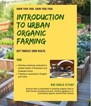 """""""Know Your Food, Grow Your Food"""" Workshop on Urban Organic Gardening"""