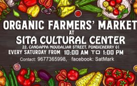 Saturday Organic Market