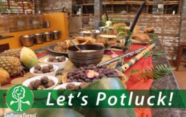 Vegan Potluck at Sadhana Forest