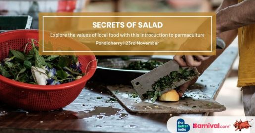 Secrets of Salad - An Introduction to Permaculture