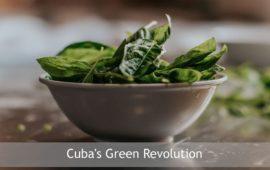 Cuba's Green Revolution