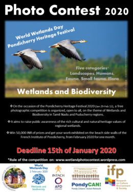 Wetland Photo Contest 2020