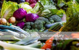 China Study Documentary