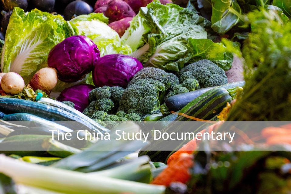 Sadhana Forest _Eco Film _Club: The China Study Documentary