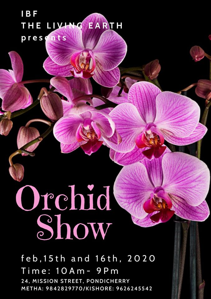 Orchid Show with a difference