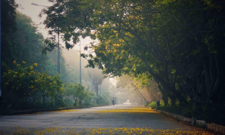 Pondicherry University Admissions 2020 Registration Open Pondy Live